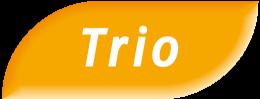Trio – PMU.fr